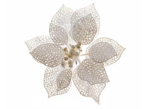 Flor Ponsetia blanca