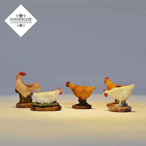 Conjunto gallinas