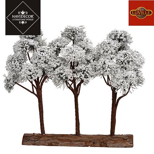 Set 3 árboles con base