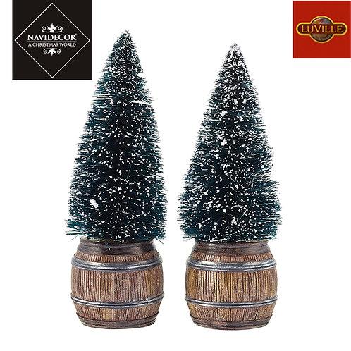 Set 2 árboles macetero