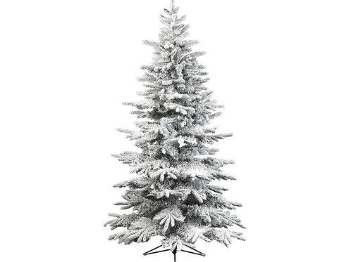 Snowy Alaskan fir