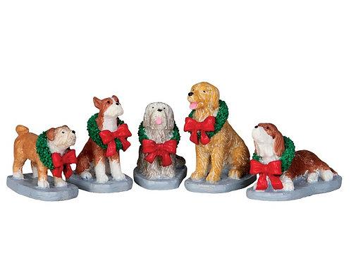 Conjunto de Perros