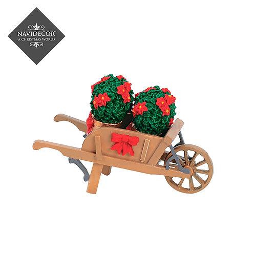 Wheelbarrow with ponsettias