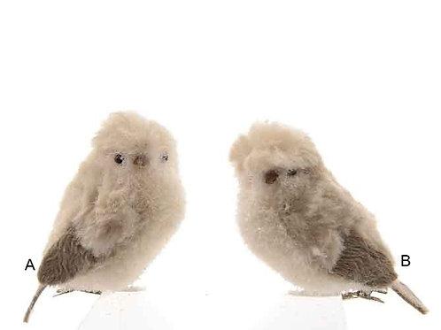 Pájaro con clip