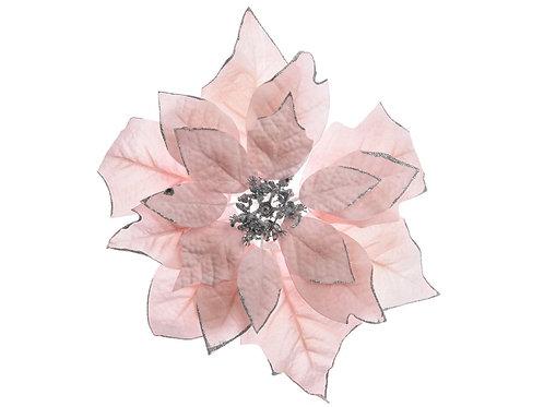 Flor ponsetia blush pink