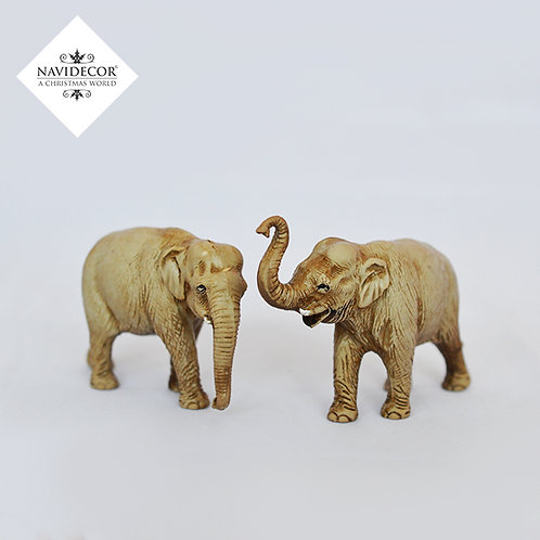Set 2 elefantes