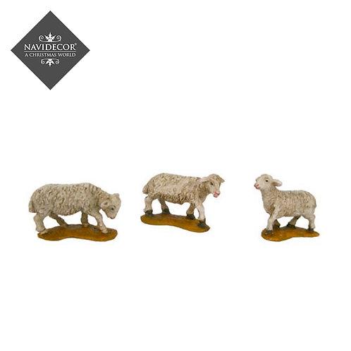Conjunto 3 ovejas Oliver 6cm