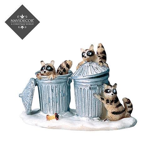 Cubos de basura con mapaches