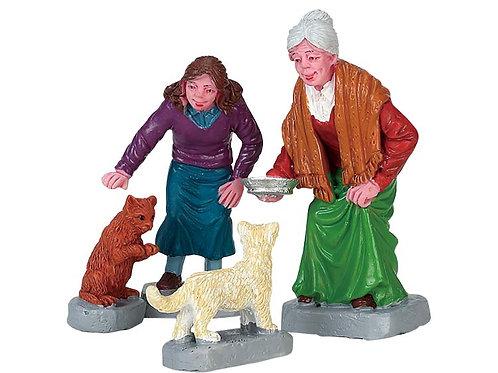 Alimentando gatos