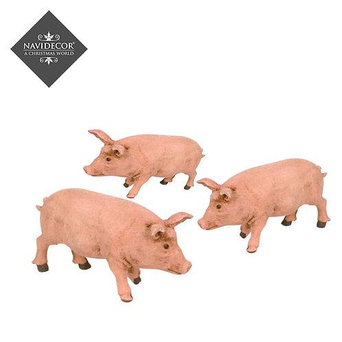 Conjunto 3 cerdos Oliver 8cm