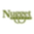 Nugget logo.png