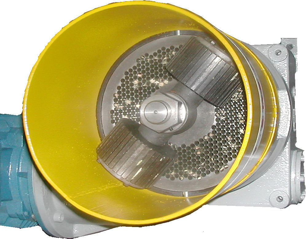 DSCN8175
