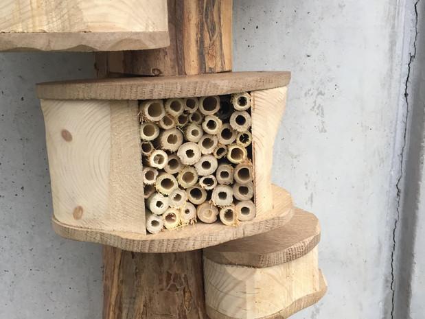 atelier           hôtel à insectes