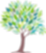 tree-3577114_1280.png