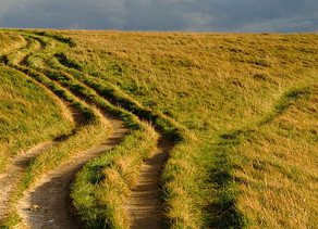 [Tidings] The Road Less Travelled