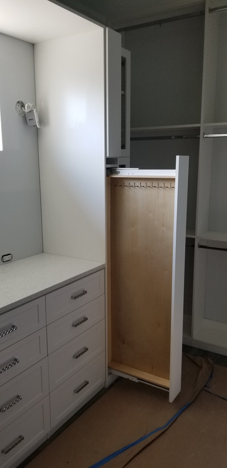 Closet With Tie & Belt Pullout