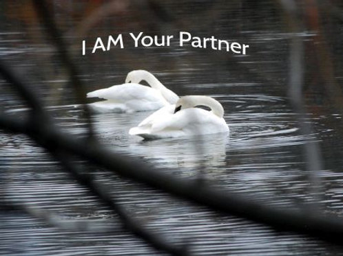 I Am Your Partner