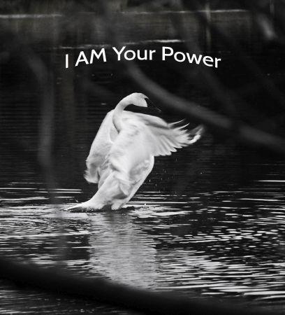 Power_thumb.jpg