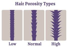 Put Down Those Products! Learn About Hair Porosity First!