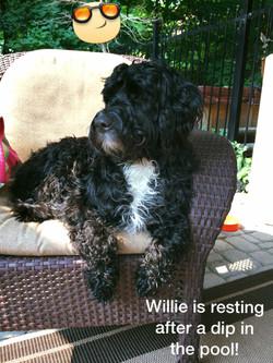 Ondulado Willie