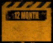 12-Month.jpg