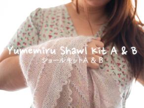Yumemiru Shawl Kit
