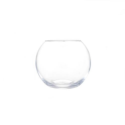Vaso Aquário de Vidro