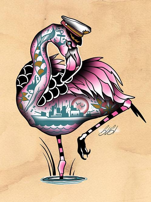 Flamingo - Seabird