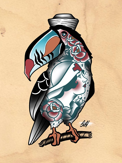 Tucan - Seabird