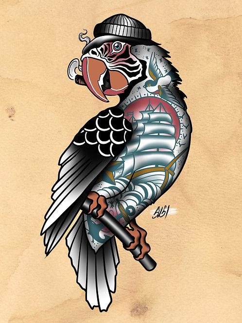 Parrot - Seabird