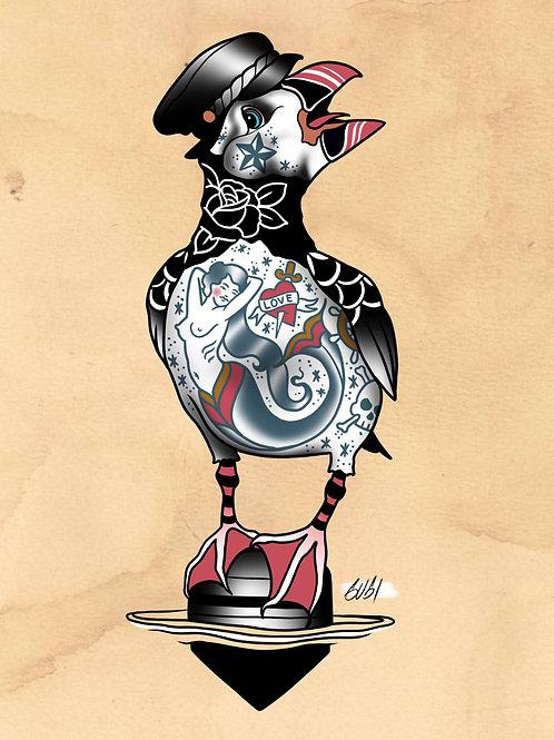Puffin - Seabird