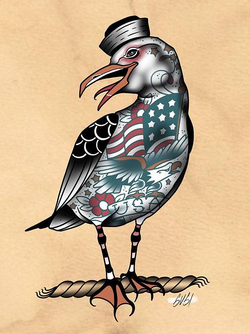 Seagull - Seabird