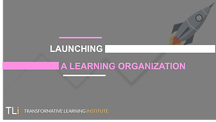 Launching a Learning Organization.png