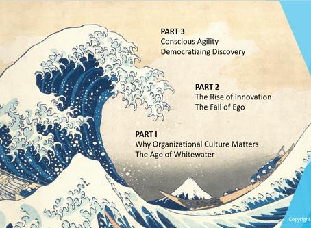 Webinar: Conscious Agility for Innovation & Inclusion