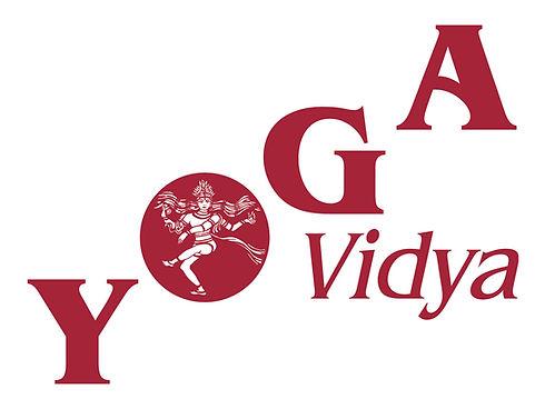 Yoga-Vidya-Logo.jpg