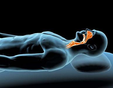 Diagnostic et dépistage du ronflement et de l'apnée du sommeil