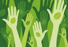 Progetti di Ecosostenibilità nel QTS