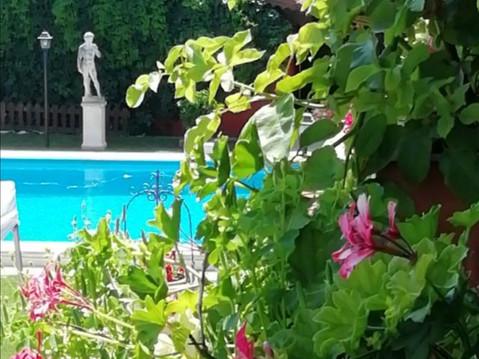 Villa per Matrimonio con piscina Roma