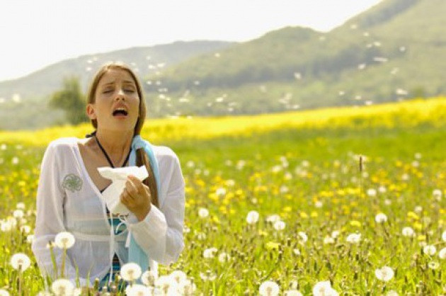 SPRING AND THE RETURN OF HAY FEVER