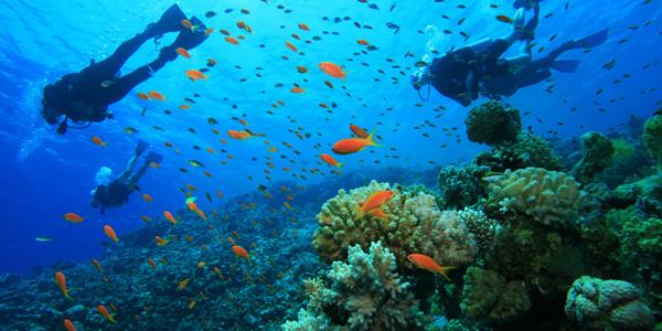 La plongée sous-marine et les risques pour la sphère ORL