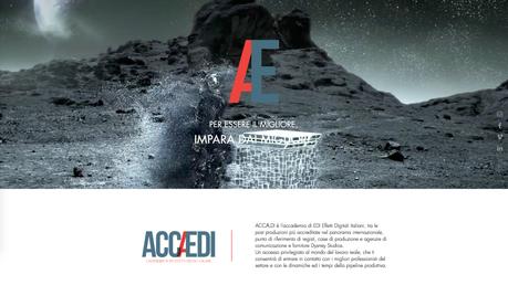 Accaedi Web Site