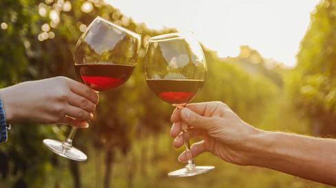 fotografia-per-produttori-di-vino-piemon