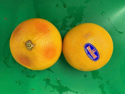 Grapefruit White each