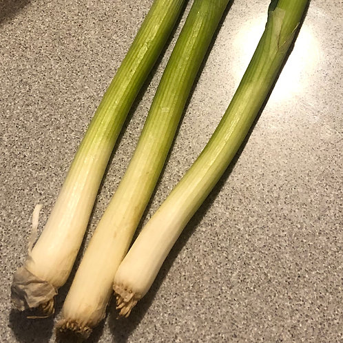Spring Onions Per Bunch