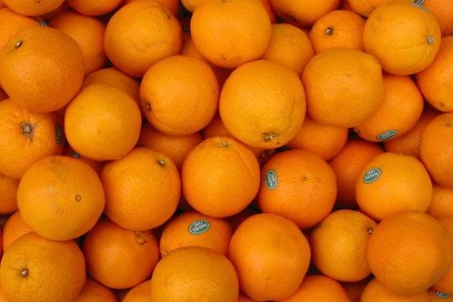 Oranges 6 pack