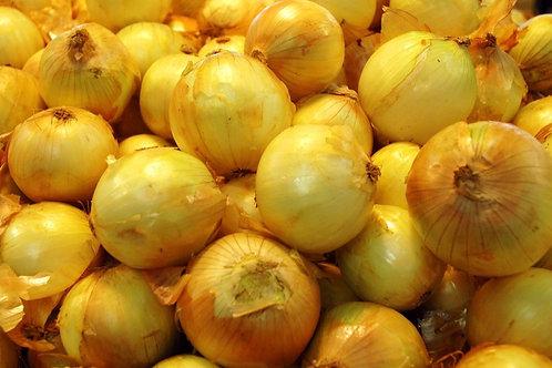 Onions Large 1kg