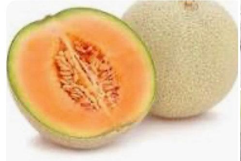 Canteloupe Melon each