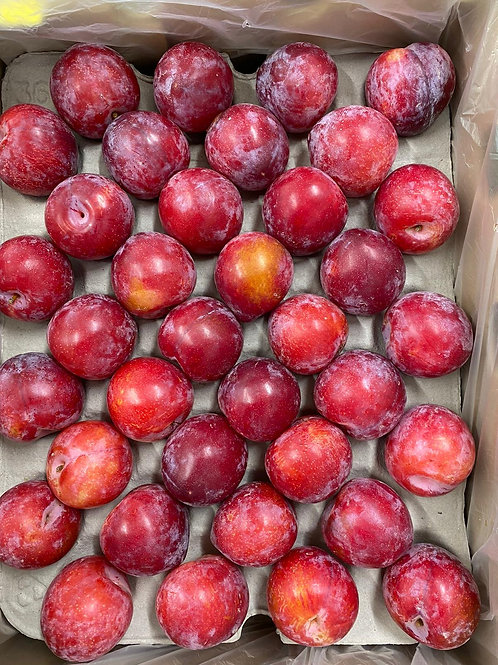Plums 6 pack