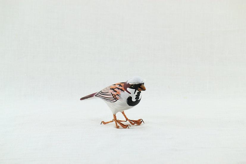 Papier Mâché - House Sparrow