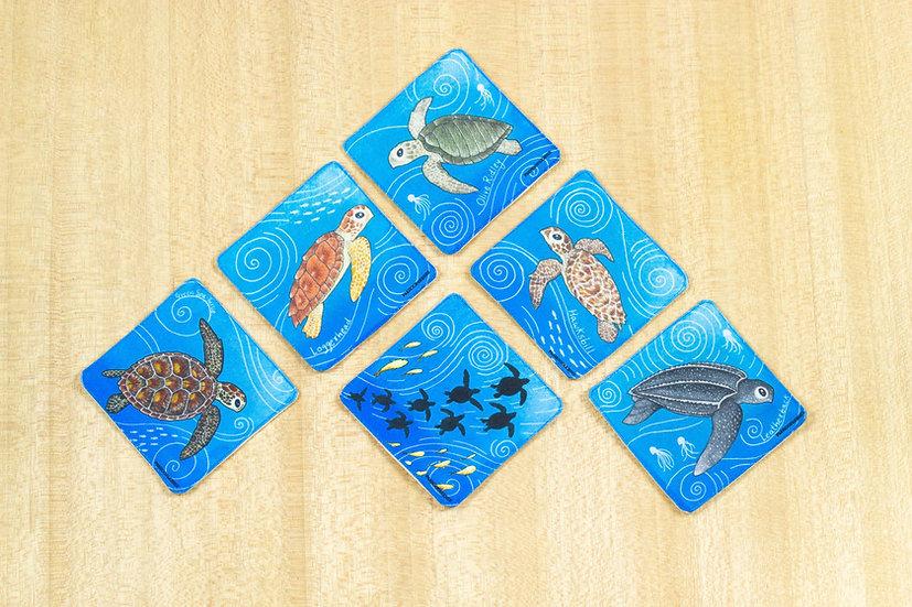 Indian Sea Turtles: Set of 6 Fabric Coasters